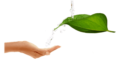 Fresh-Water-on-leaf-with-hand
